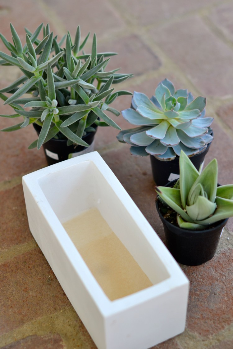 tip! place a tea bag at bottom of ceramic pot to keep the soil from spilling out - via lovelyluckylife.com