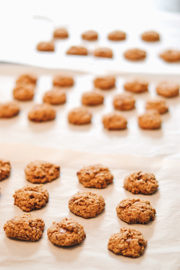 a super easy recipe for making lactation cookies to boost mama's milk supply + give her a boost of energy! the perfect breastfeeding snack