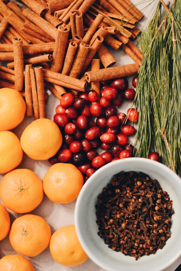 use cinnamon sticks, fresh cranberries, tangerines, cloves, and fresh pine in a mason jar to make Christmas stovetop potpourri