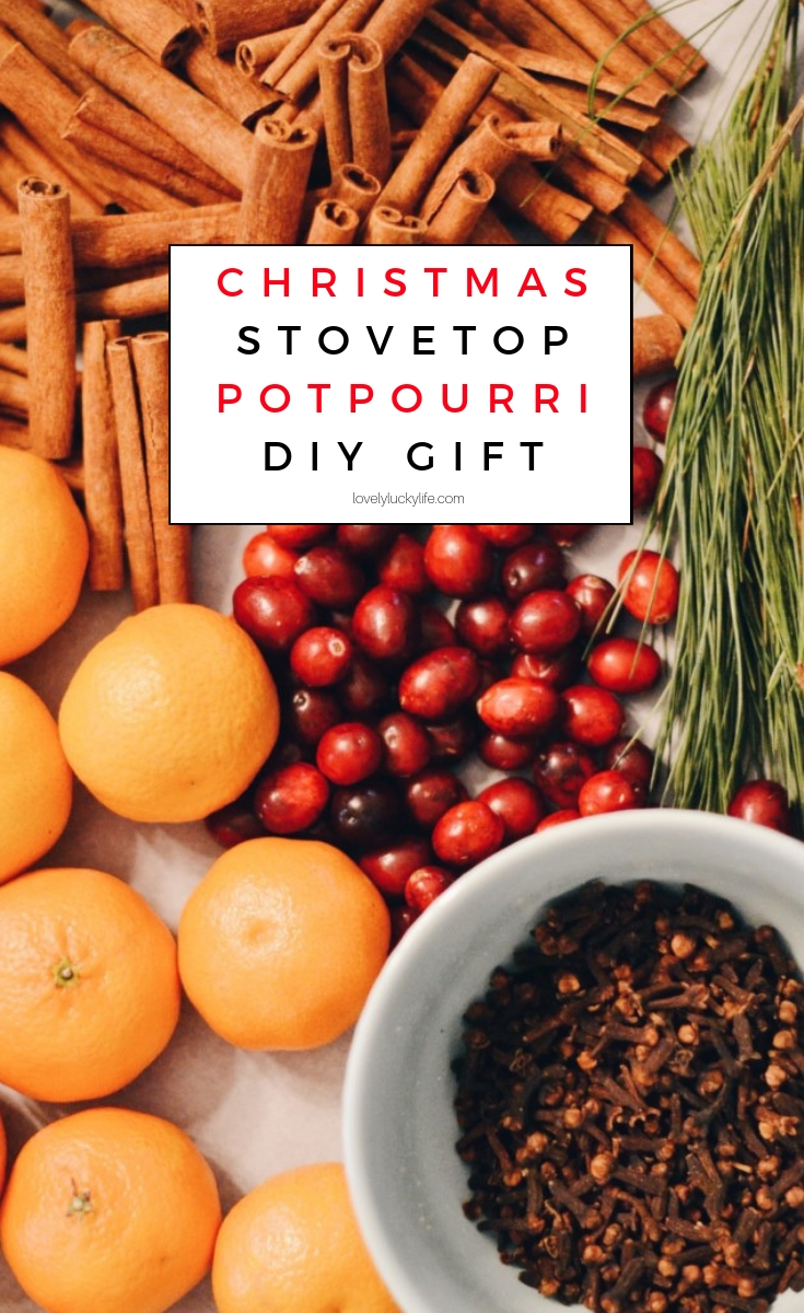 how to make your own stovetop potpourri - this DIY Christmas gift is easier to make than you think!