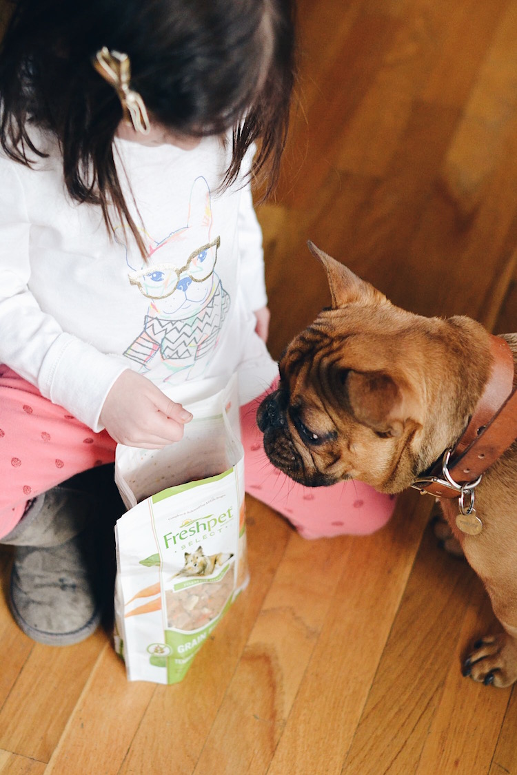 How to Welcome a Puppy with Little Kids at Home - need to read if you're considering getting a puppy and you have kids