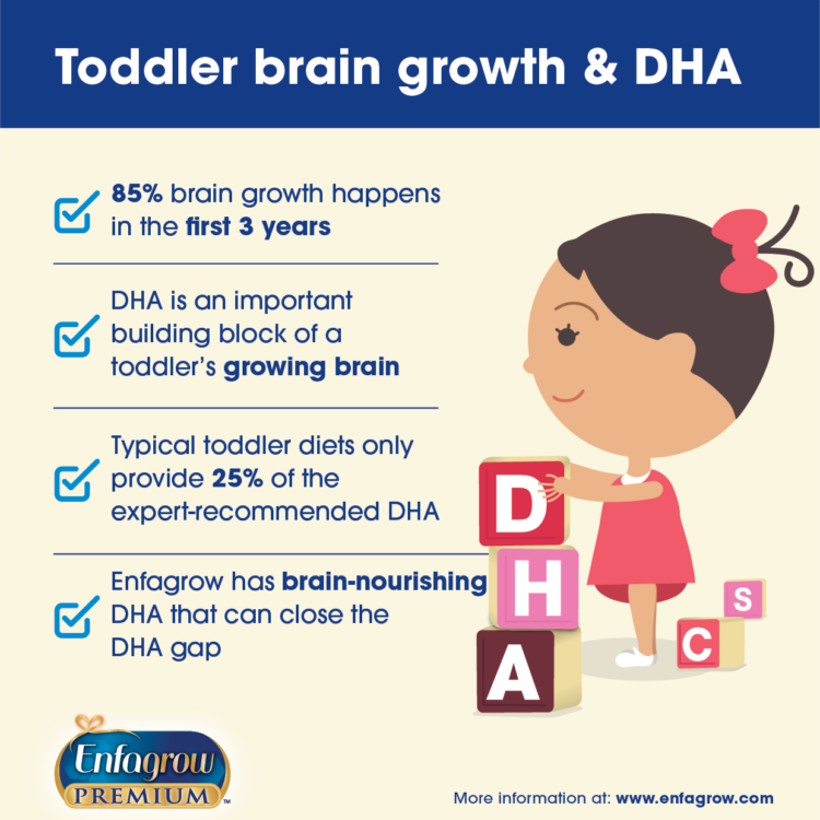 the importance of DHA and the developing toddler brain