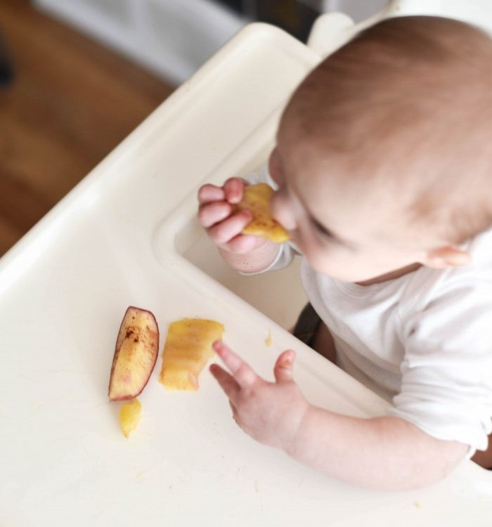 Easy Steamed Apples Recipe for Baby Led Weaning
