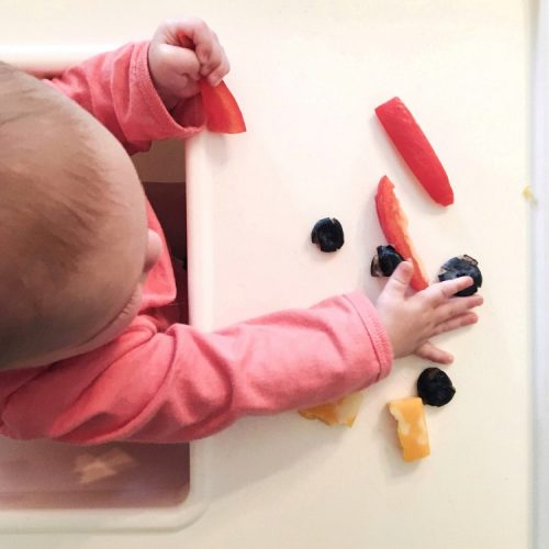 baby led weaning foods for a 6 month old
