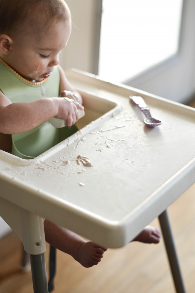baby led weaning musts: big bib, easy-to-clean highchair, and yummy finger foods