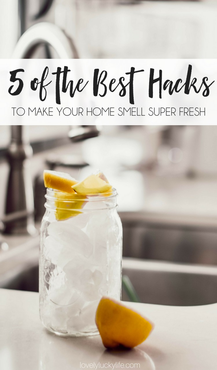 5 of the best hacks for making your home smell super fresh - each of these banish stink in your house and are done in under 5 minutes!