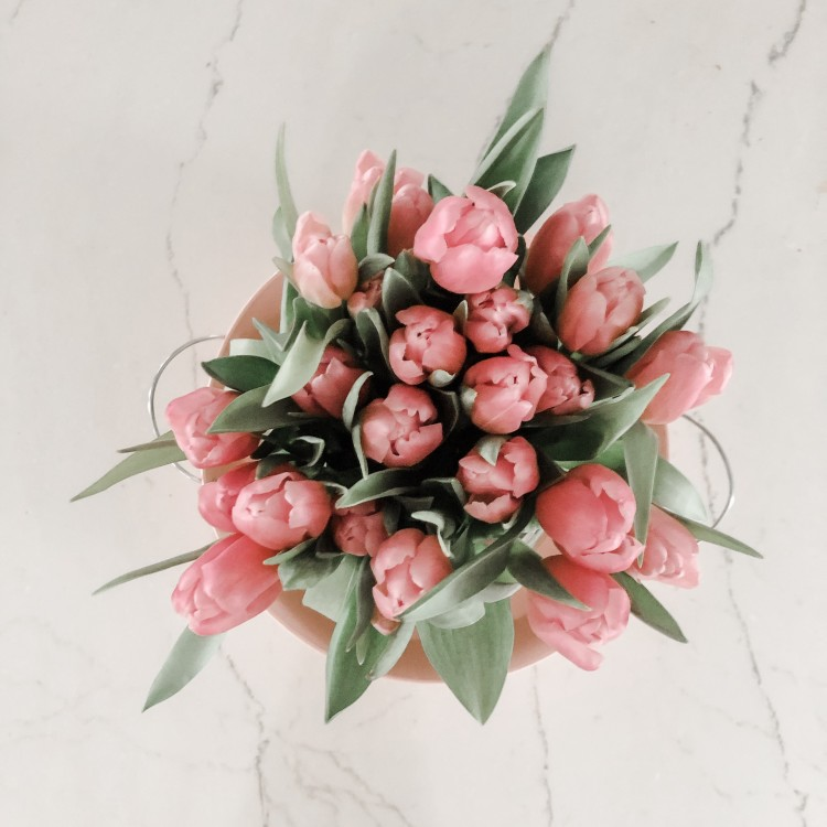 love adding fresh pink tulips to the counter for Valentine's Day