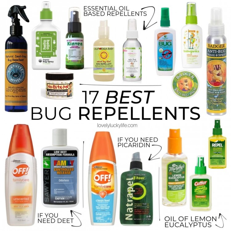 Safest Bug Sprays for Kids