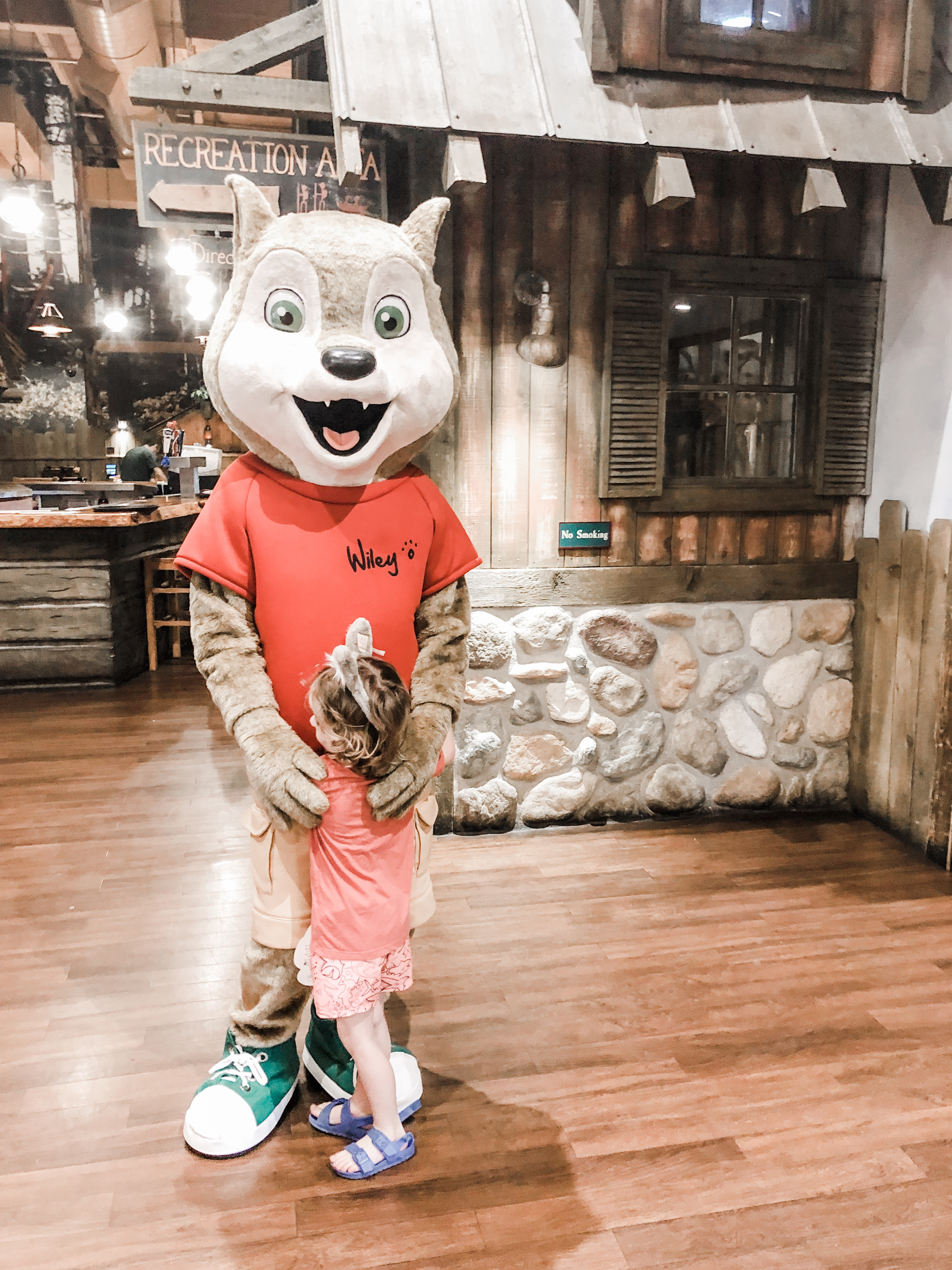 Great Wolf Lodge Wiley Wolf