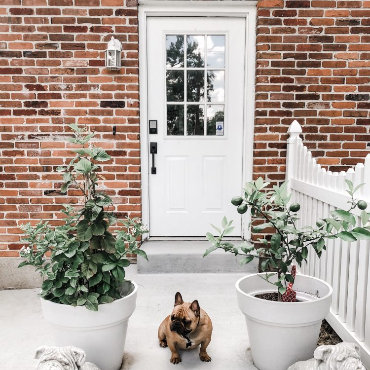 outdoor sconces on a brick house